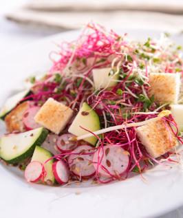 Ensalada de tofu FANYA y germinados de remolacha FANYA