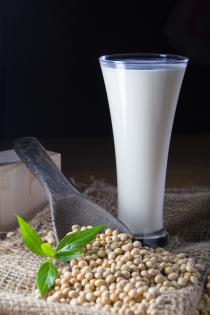"""Leche de tofu """"tofu milk"""" FANYA"""
